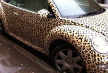 animal print obsession.  / by Paxton Sabate