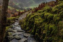 Märchenhafte Orte / Hier würde man sich nicht wundern wenn einem Zwerge, Elfen, Prinzessinnen und Ritter oder Einhörner über den Weg laufen...