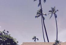 """""""The Island of Maui"""" hawaii honolulu / images of """"The Island of Maui"""""""