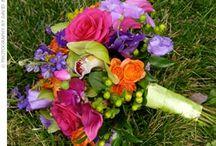 Wedding / by Maureen Armour