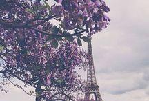 Travel Dreams!