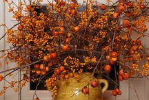 Fall Decor / by Cherry Valley Country Club
