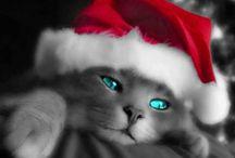 koledy vianočné