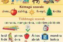 Nyelvészet és nyelvhelyesség