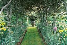 Gardening / by Tara Glenna