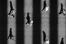 Alexey Menshchikov- photography