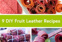 Dehydrator Foods / Recipes for our Nesco American Harvest food and jerky dehydrator
