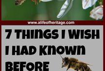 Bees, beekeeping and honey