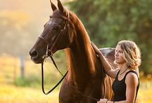 Photography - Equine / by Tiffanie Luster