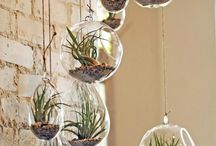 Glas Bottles & Table Decor