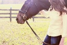 Horses / by Teresa Ruelas
