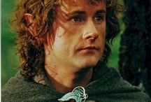 The Lord of the rings/ the Hobbit