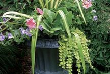 year round containers