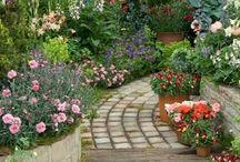 {garden: design}
