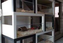 Cat trees & DIY cages