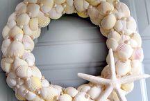 Shells & sea star