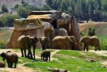 travel / by Julie Ribelin