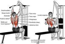 Πλάτη workout