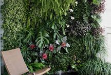 Jardim vertical e jardins