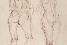 Anatomy sketches / Human anatomy sketches and studies