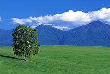 風景 scenery