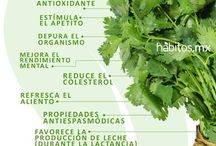 Nutrición frutas y verduras