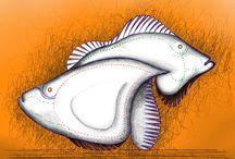 draw fish