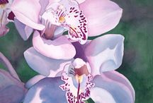 Painting Orchids / by Francoise Chauray