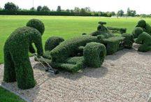 groene kunst (heggen, bloemen en planten)