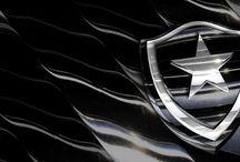 Estrela Solitária / Um pouco dessa paixão chamada Botafogo