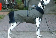 DIY dog raincoat
