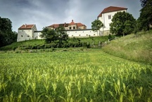Slovenian Castles / Slovenian history is strongly interconnected with rich cultural heritage and vast symbolic values.