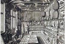 Cabinet of Curiosities Stash
