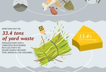Infographics: Recycling