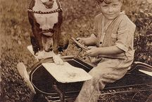 Vintage Dogs / by Maria 50girl