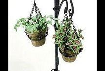 porta plantas