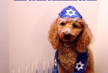 Hanukkah / by Dana Sturgeon Binder
