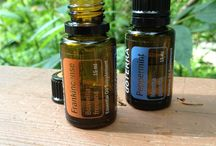 Essential Oils - Sinus/Headache / Sinus and Headache oil therapy / by Kim Miller