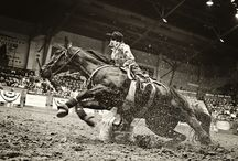 Her Heart is a Rodeo♥ / by Hailey Earnhardt