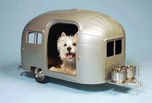 In the Dog House now! / Houses for dogs