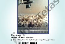 NO-HP-0822-5705-4455-(Telkomsel)Cara Menggunakan Penetas Telur Ayam,