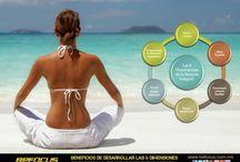 Wellness Corporativo / Wellness Corporativo