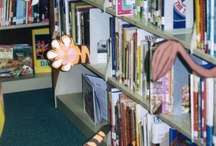 Library Displays / Displays to create an environment to get children excited about reading!