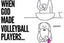 volley life
