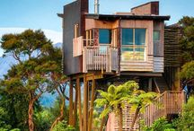 Treehouses / Elegant houses to live in up in a tree