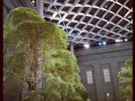 Kogod Courtyard @ the Smithsonian American Art Museum / The Robert and Arlene Kogod Courtyard is a part of the building houses the Smithsonian's National Portrait Gallery and the Smithsonian American Art Museum.   The enclosed courtyard with its elegant glass canopy designed by Foster + Partners provides with assistance by landscape designer Kathryn Gustafson.