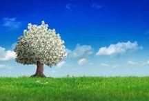 frugal living & organic/natural living