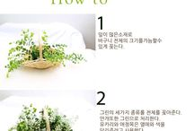 How to make flowerarrangement / How to make flowerarrangement
