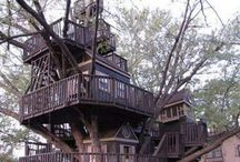 Tree House /Ağaç evler