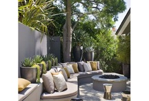 Courtyard/garden ideas